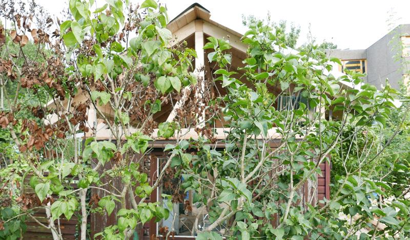 Gartenhaus-Bauphase-Konstruktion05